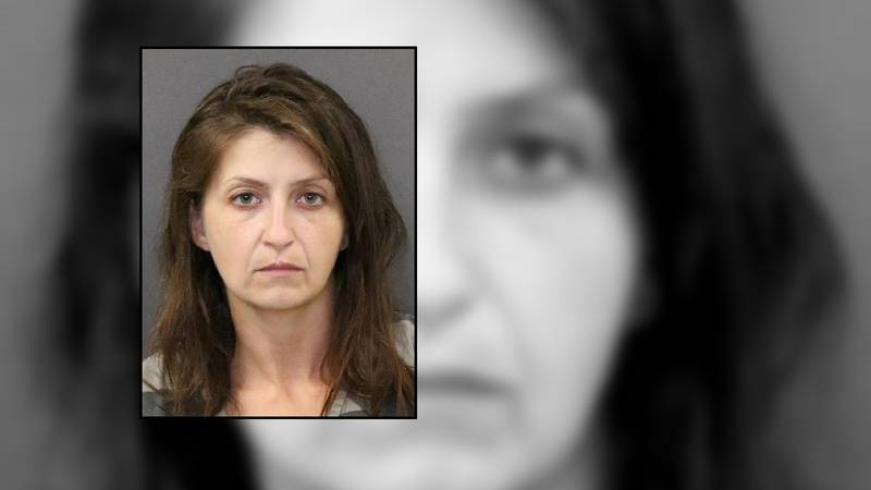 Savannah Masters, 34, of Hastings, was arrested Thursday for theft and flight to avoid arrest...