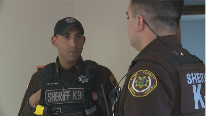 Seward deputy returns to work