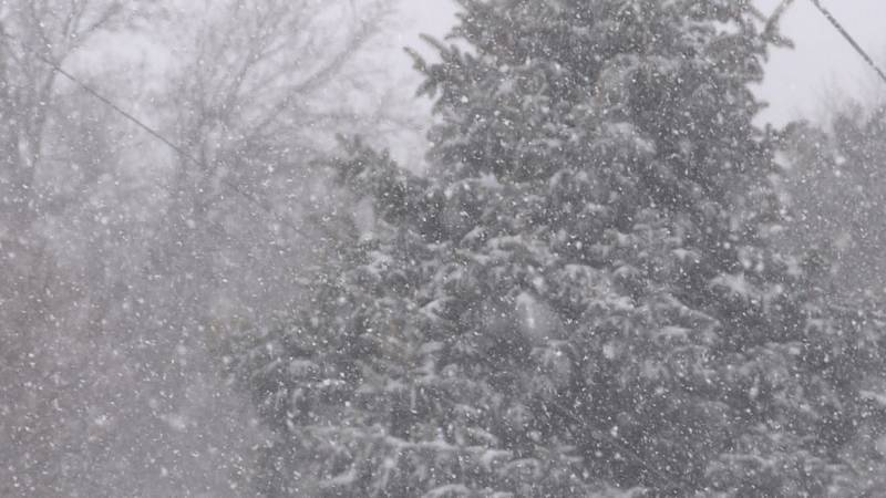 Cold exposure can happen in just minutes, Lincoln Fire and Rescue said when it's zero degrees,...