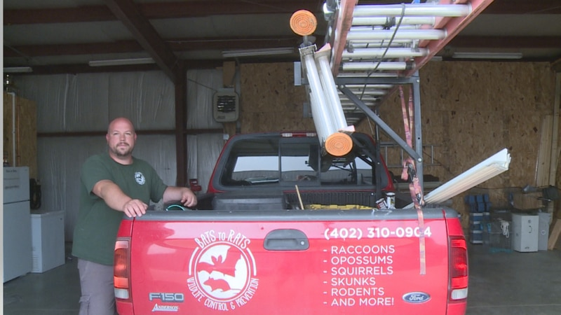 Patton says August is usually the high season for bat calls but with people being home more...