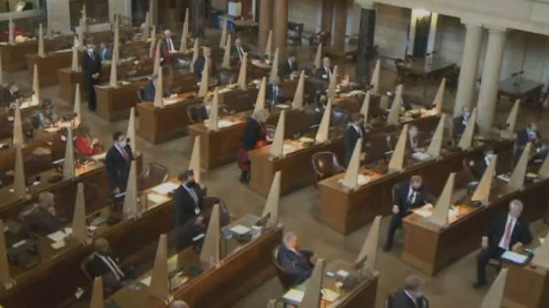 State lawmakers have voted to advance new legislative and congressional maps.