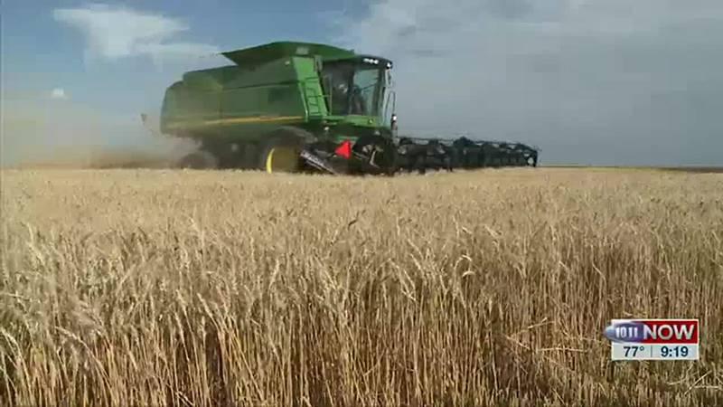 Here's the latest on the wheat harvest in Nebraska.