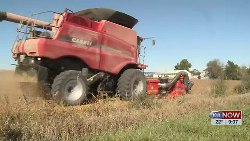We talk with a Common Ground volunteer on how farmers are approaching new leadership in...