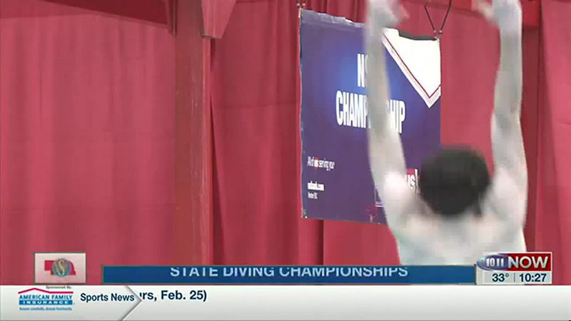 State Diving Championships