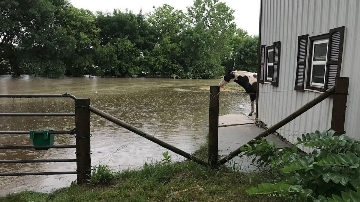 Flooding seen in the Hickman area on Thursday. (Source: Eric Malina)