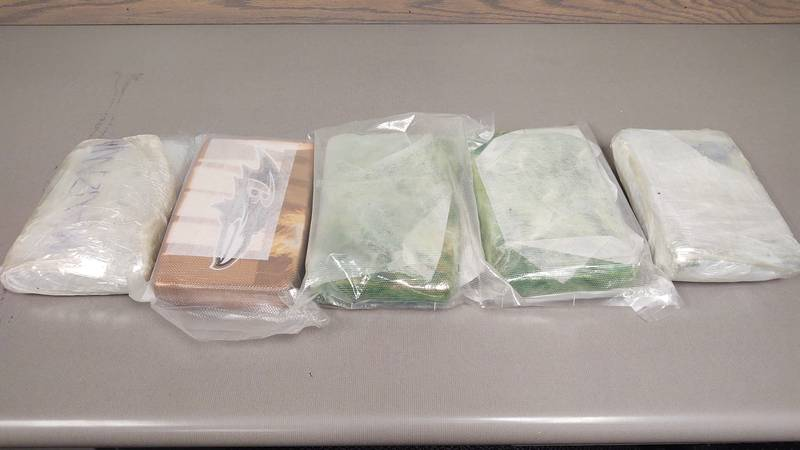 11 pounds of fentanyl found during a traffic stop in Dawson County.