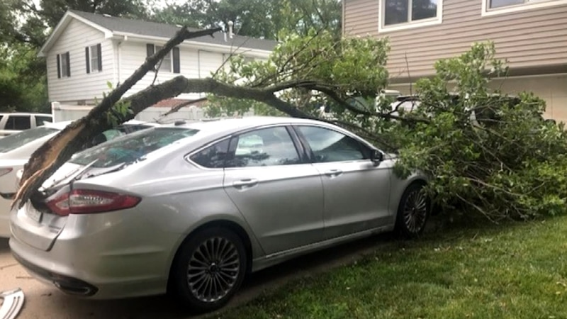 This is what Karen Loll and her family woke up to Saturday morning. Her son's car is a total...
