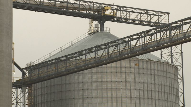 October is cooperative month in Nebraska, and one way co-ops help producers is through what's...