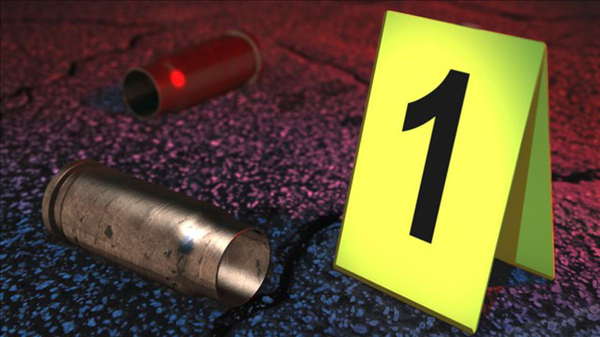 Lincoln police located shell casings, but not any damage.