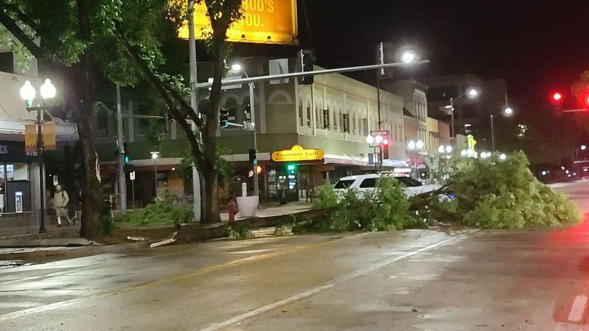 10/11 viewer captures fallen tree in downtown Lincoln. (SOURCE: Mary Turner)